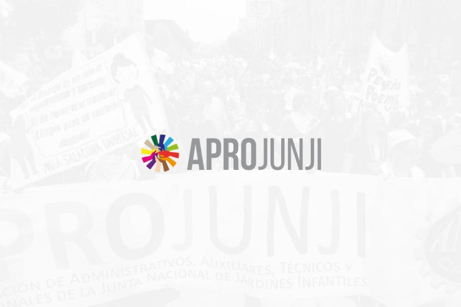 Boletín N°3 Aprojunji en acción noviembre 2020